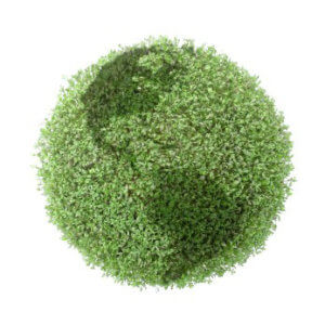 eco-friendly carpet cleaning in Reno NV