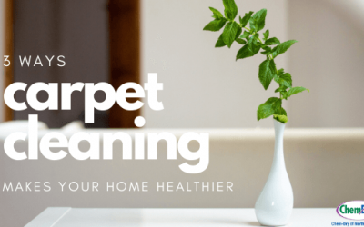 3 Ways Carpet Cleaning Makes Your Home Healthier
