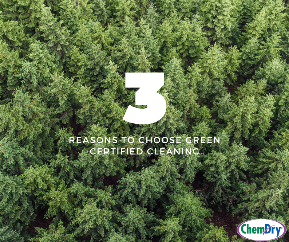 3 Reasons To Choose Green Certified Cleaning