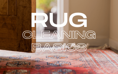 Rug Cleaning Basics
